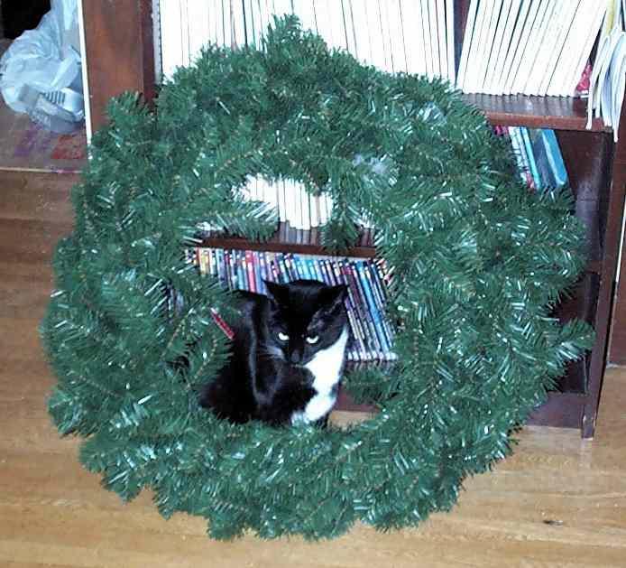 loki_wreath.jpg